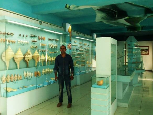sea shell museum mahabalipuram